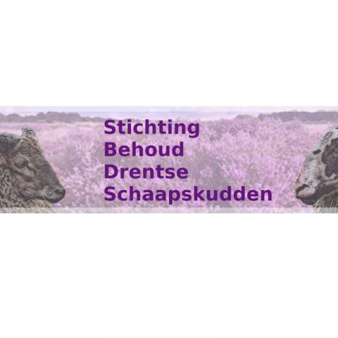 Stichting Behoud Drentse Schaapskudden