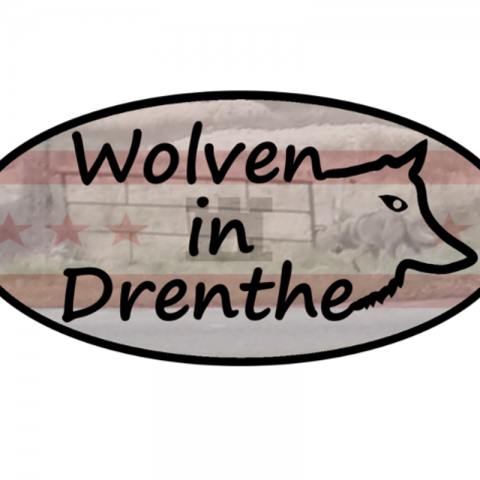 Wolven in Drenthe